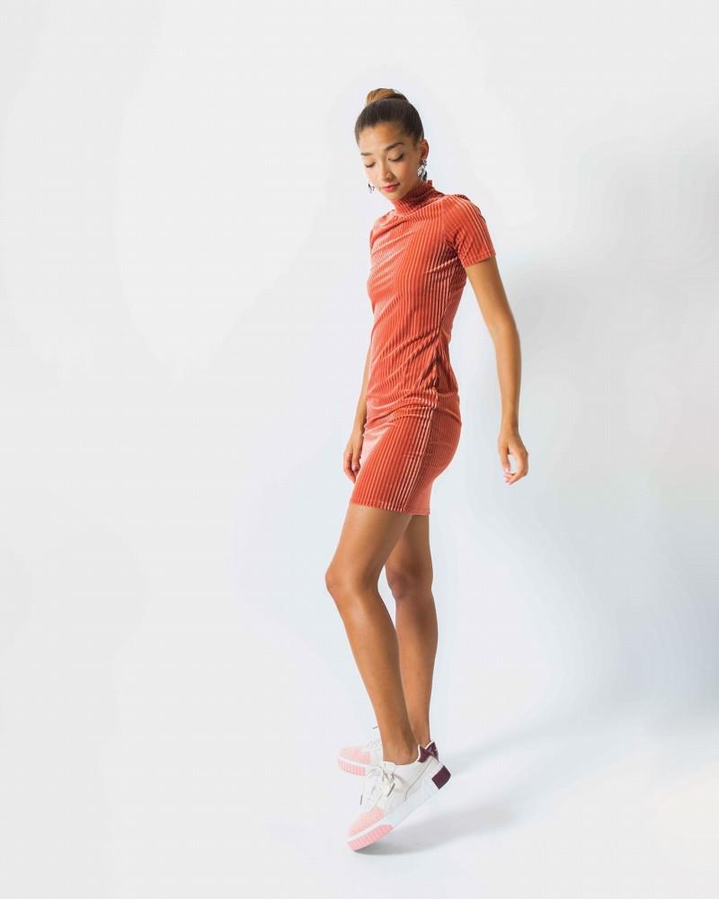 Nmmona S/s Mini Dress 5